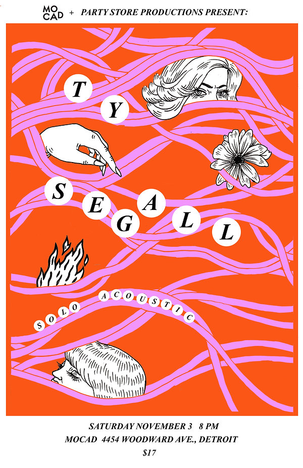 Ty Segall Poster.jpg