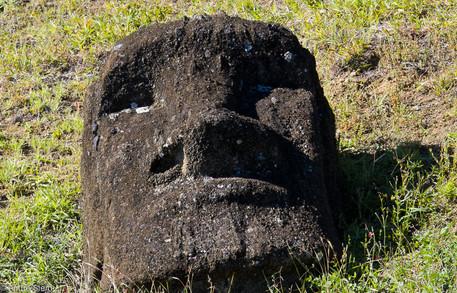 Moai head