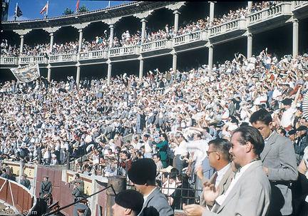 the-crowd-copy.jpg