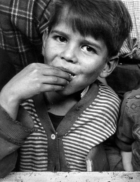 Kid having lunch