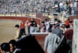 entrance-of-matadors.jpg