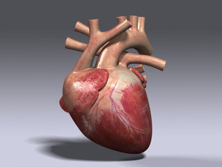 New drug could sustain oxygen-starved hearts