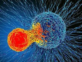 Liệu pháp miễn dịch mới chữa nhiều loại ung thư