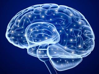 Những tiến bộ trong nghiên cứu cơ chế não bộ mã hóa giọng nói hứa hẹn giúp người câm có thể nói được