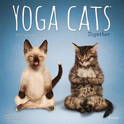 YOGA CATS TOGETHER 2021 CVR.jpg