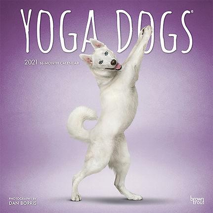 YOGA DOGS 2021 CVR.jpg