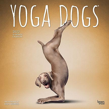 4052-7__YogaDogs__BT_12SQ22_v02-1.jpg