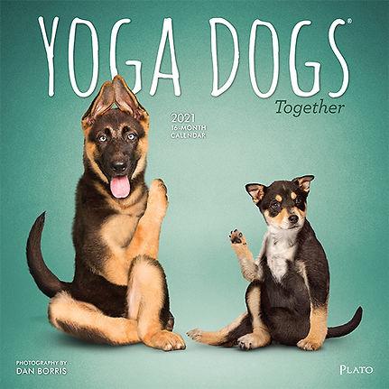 YOGA DOGS TOGETHER 2021 CVR.jpg