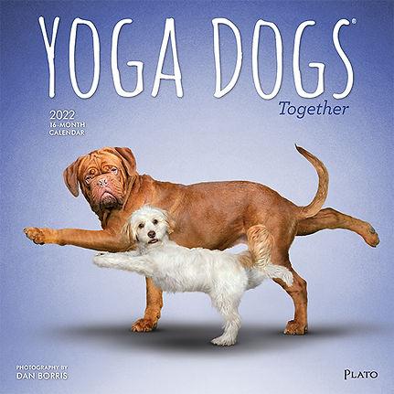 4067-1__YogaDogsTogether__PL_12SQ22_v02-1.jpg