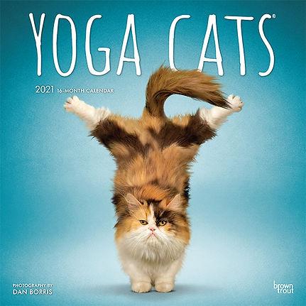YOGA CATS 2021 CVR.jpg