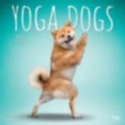 1226-5__YogaDogs__BT_12SQ20_v02 1 web.jp