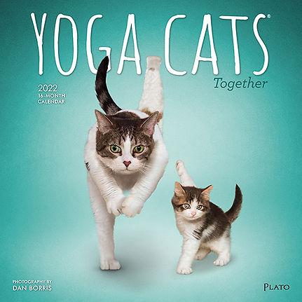 4066-4__YogaCatsTogether__PL_12SQ22_v02-1.jpg
