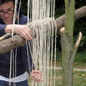 Workshop1 : Building a Tree Loom