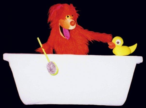 dog n bath