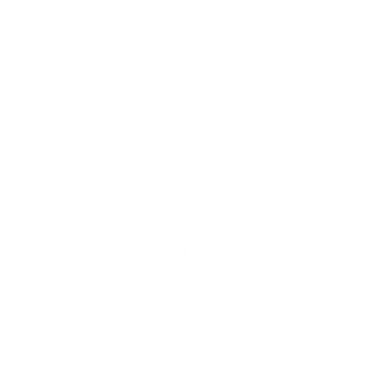 bol logo trans-01.png