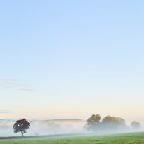 Misty Views at The Coppleridge Inn