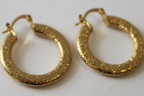 Gold Sparkly Earrings