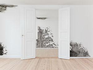 Interior+With+Mold.jpg