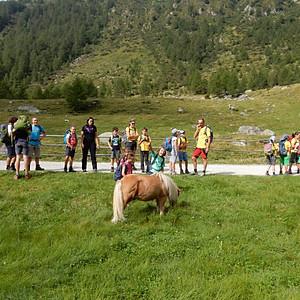 Escursione ad Altafossa