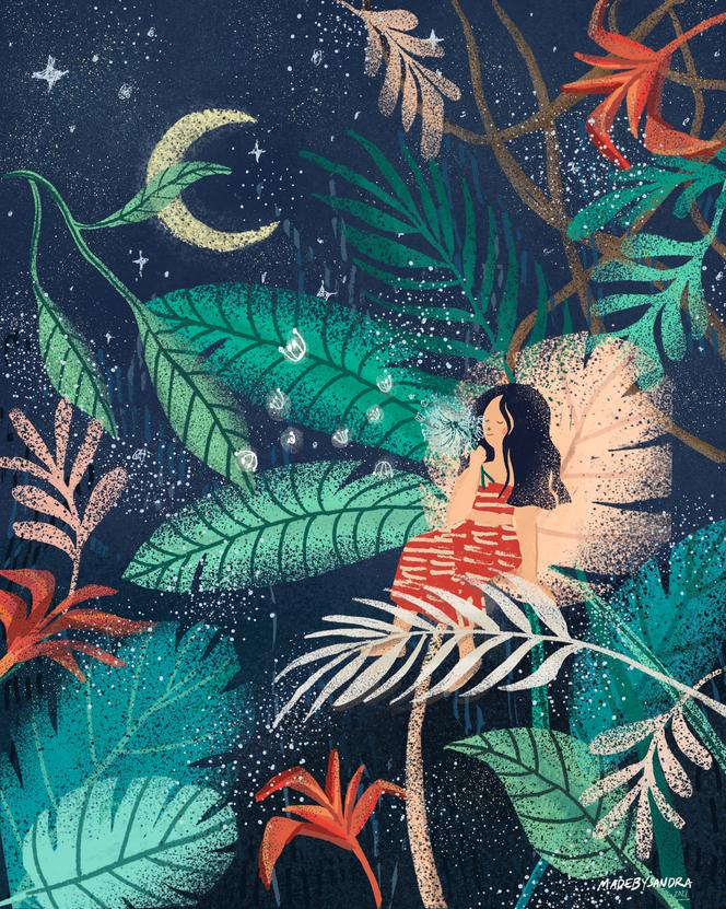 Jungle_Dreams.png