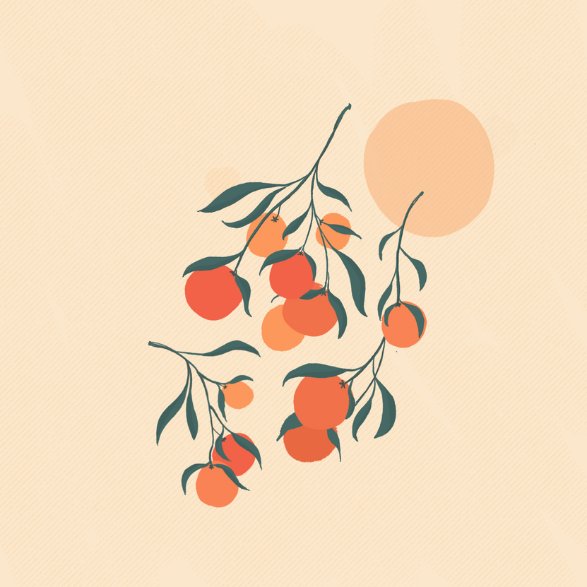 Clementines_.png