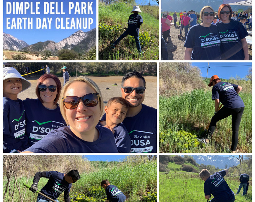 Dimple Dell Cleanup 2019