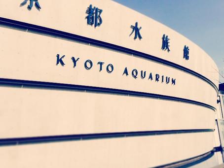 京都水族館と梅小路公園