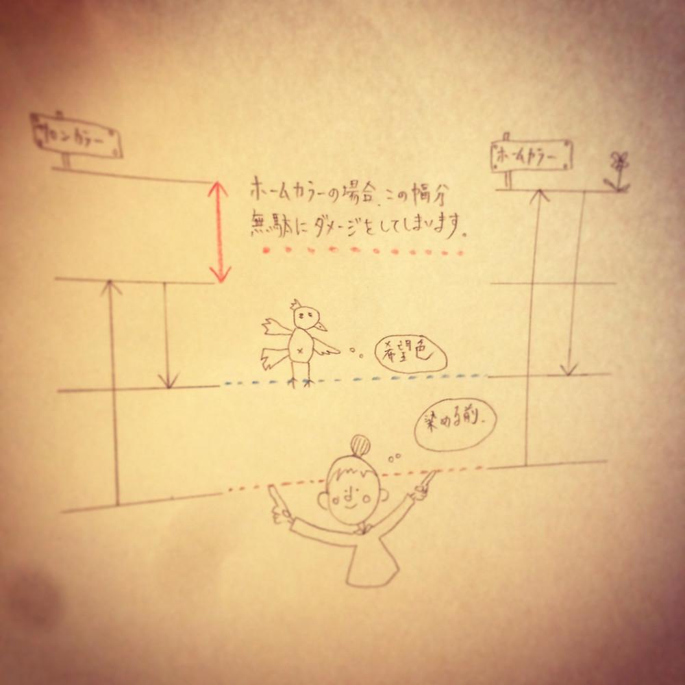 IMG_0075_2.jpg
