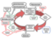 Trafficking cycle.png