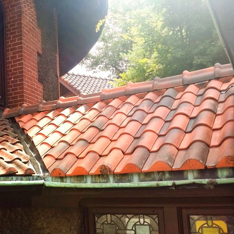 Historic Cathedral Roof Repair