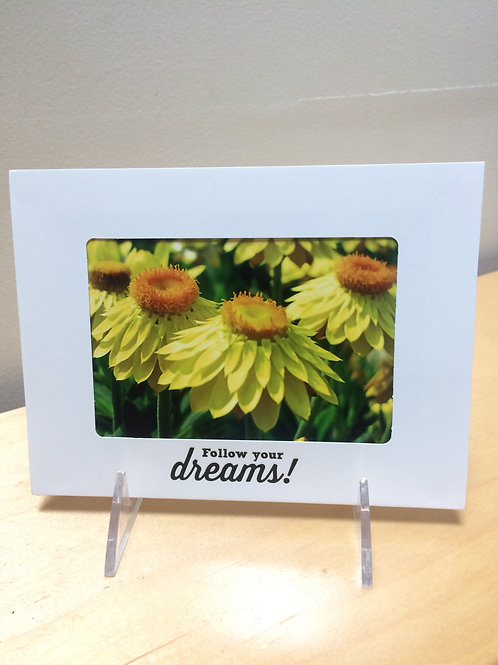 Daisy Dreams Card