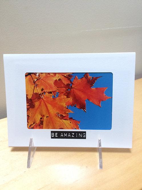 Amazing Fall Leaves Photo Card
