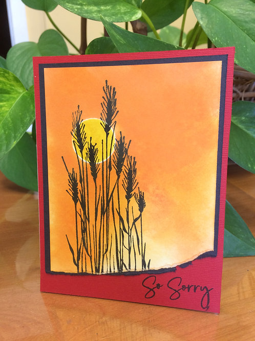 Grasses in the Sunset Sorry Card