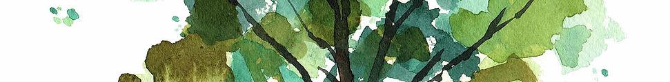formazione-banner-verde.jpg