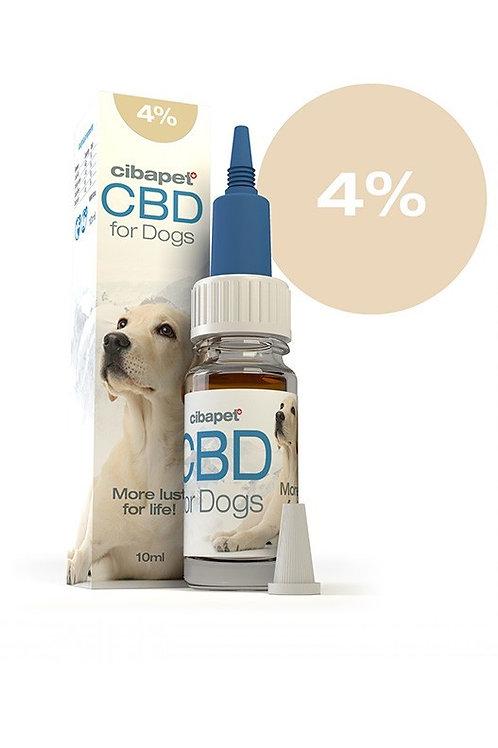 Huile de CBD 4% pour chiens Cibapet par CIBDOL