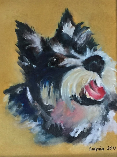 """PUPPY A original oil painting on stretched canvas, 8""""x10"""""""