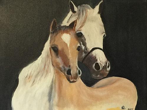 "TWO HORSES (69) original oil painting 11""x 14"""