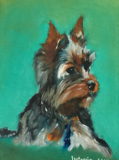 "PUPPY B original oil painting on canvas panel, 9"" x 12"""