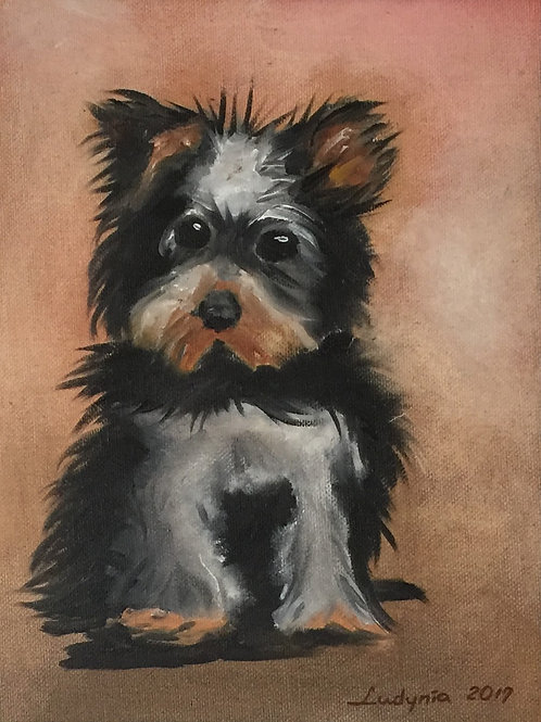 "PUPPY E original oil painting on canvas panel, 9"" x 12"""