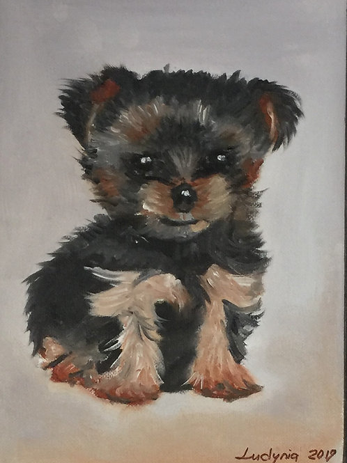 """PUPPY F original oil painting on canvas panel, 9"""" x 12"""""""