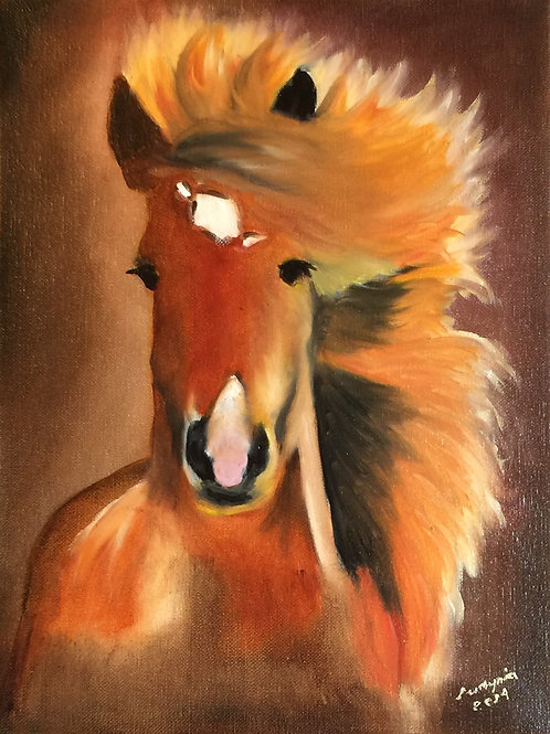 "HEAD OF THE HORSE 2 original oil painting 11""x14"""