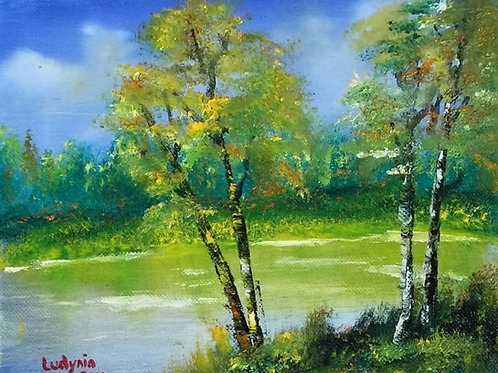 "BIRCHES original oil painting on canvas 8""x10"""