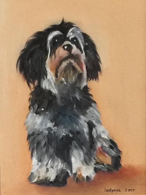 "PUPPY C original oil painting on canvas panel, 9"" x 12"""