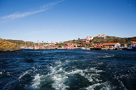 fotodyronfnhavet-1024x683.jpg
