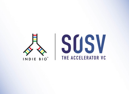 Spintex joins the IndieBio accelerator programme