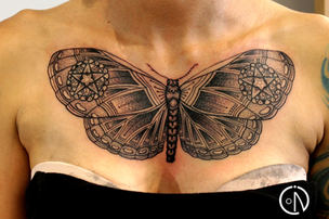 Moth and cover up for Daisy