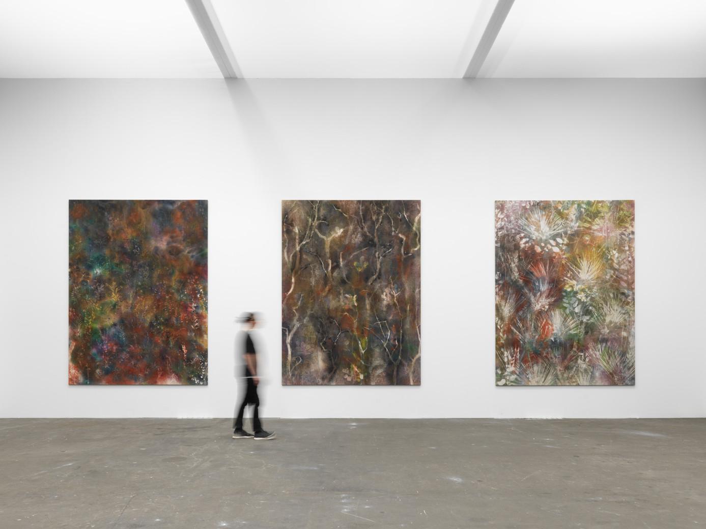 Sam Falls / 303 Gallery