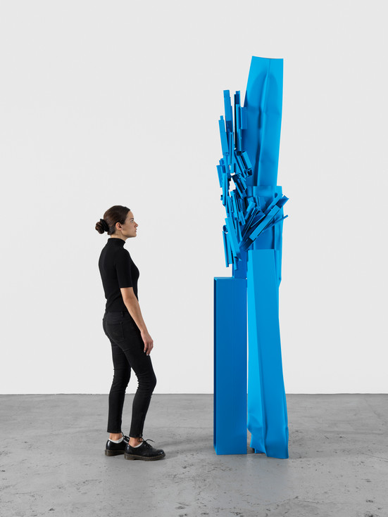 Carol Bove / David Zwirner Gallery