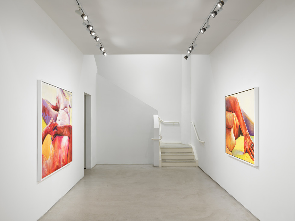 Joan Semmel / Alexander Gray Associates