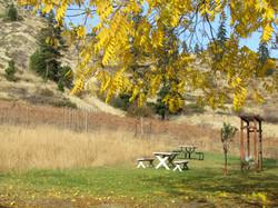 Fall 2012 (4) - Copy.JPG